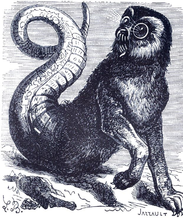 aamon-marques-do-inferno-mitologia-demonologia-demonios-demons-01-1208752-4600092